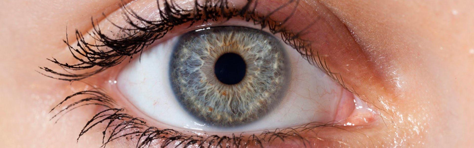 irisdiagnose-naturheilpraxis-luzern